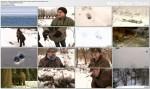 Natura mieszczucha, czyli przyroda w mie¶cie (2011) PL.TVRip.XviD / PL